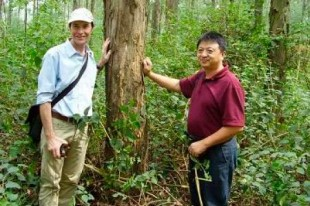 www.australiaunlimited.com-china-silviculture